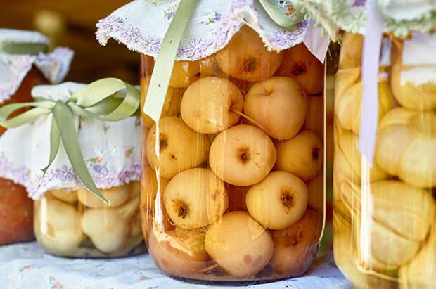 5 мифов о яблонях и 4 рецепта для тех дачников, кто в этом году собрал отличный урожай этого фрукта