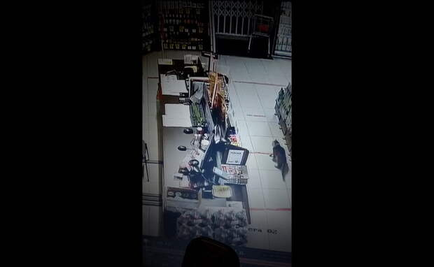 Кот несколько ночей поднимал по тревоге сотрудников магазина под Новосибирском