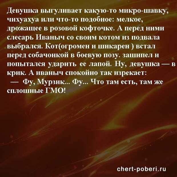 Самые смешные анекдоты ежедневная подборка chert-poberi-anekdoty-chert-poberi-anekdoty-41441211092020-4 картинка chert-poberi-anekdoty-41441211092020-4