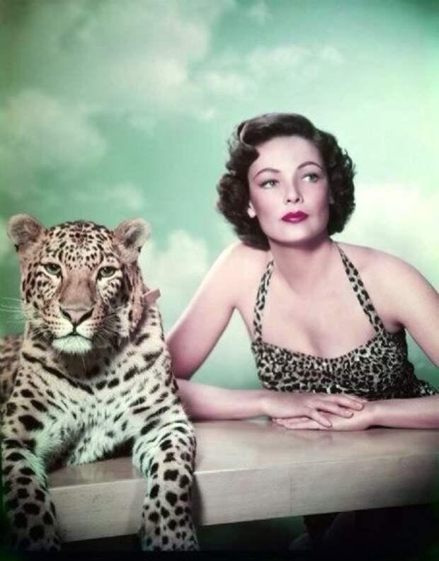 """Джин Тирни в фотосессии к фильму """"Египтянин"""" 1954 год."""