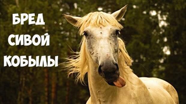 Сивая кобыла. PR