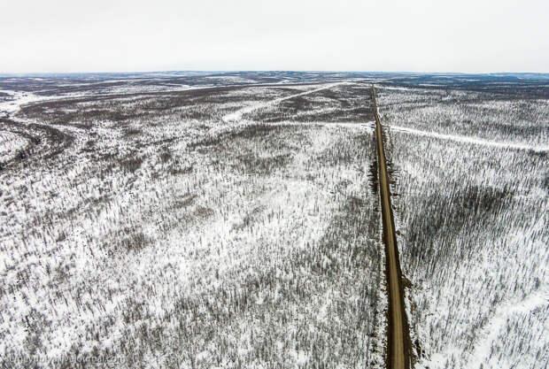 Якутская тайга:  как выглядит 60% территории нашей России…