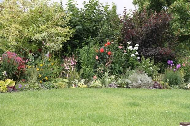 Сад Татьяны Кретовой