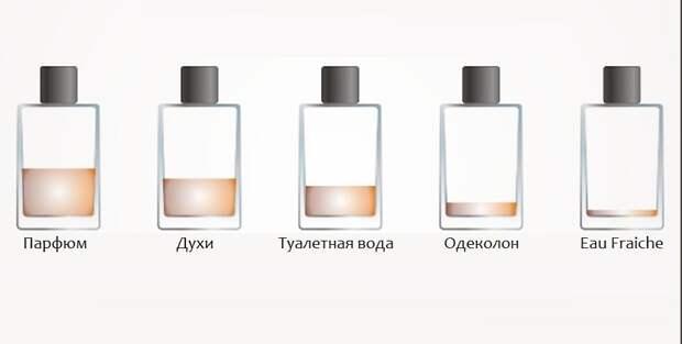 Разница между одеколоном, духами, туалетной водой и парфюмом духи, одеколон, парфюм, туалет