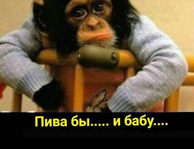 — Подскажите, пожалуйста, как быстрее всего добраться до Воронежа?...