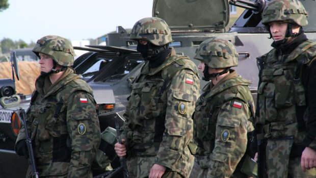 В соцсетях высмеяли польский сценарий войны НАТО с Россией
