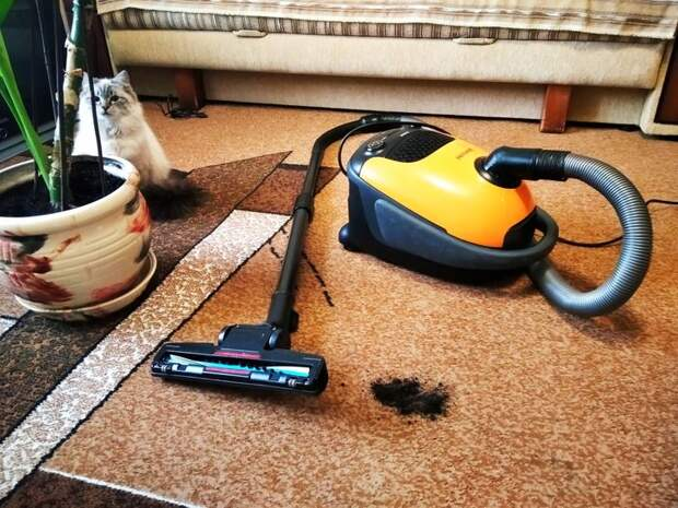 Вещи, из-за которых в квартире всегда будет пыльно, сколько ни убирай