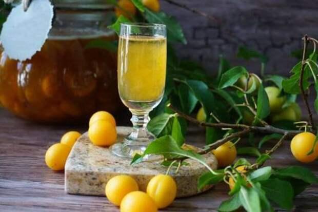 Напиток из ткемали под ткемали – рецепты наливки из алычи