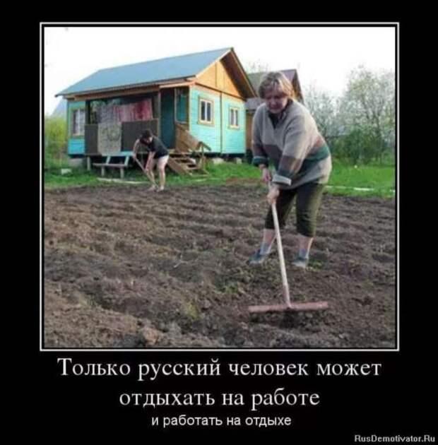 Смешные комментарии. Подборка chert-poberi-kom-chert-poberi-kom-21500317082020-5 картинка chert-poberi-kom-21500317082020-5