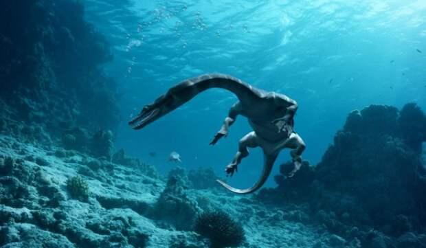 Морские_динозавры_3D_Путешествие_в_доисторический_мир-23