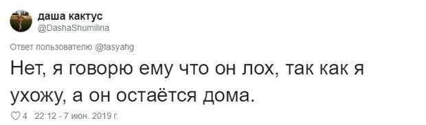 21. Тася Никитенко, животны, забавно, кот, кошка, люди, твиттер, юмор