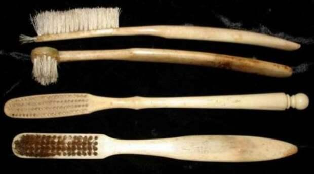 Трава и щетина кабана — чем пользовались люди до изобретения зубной щетки (4 фото)
