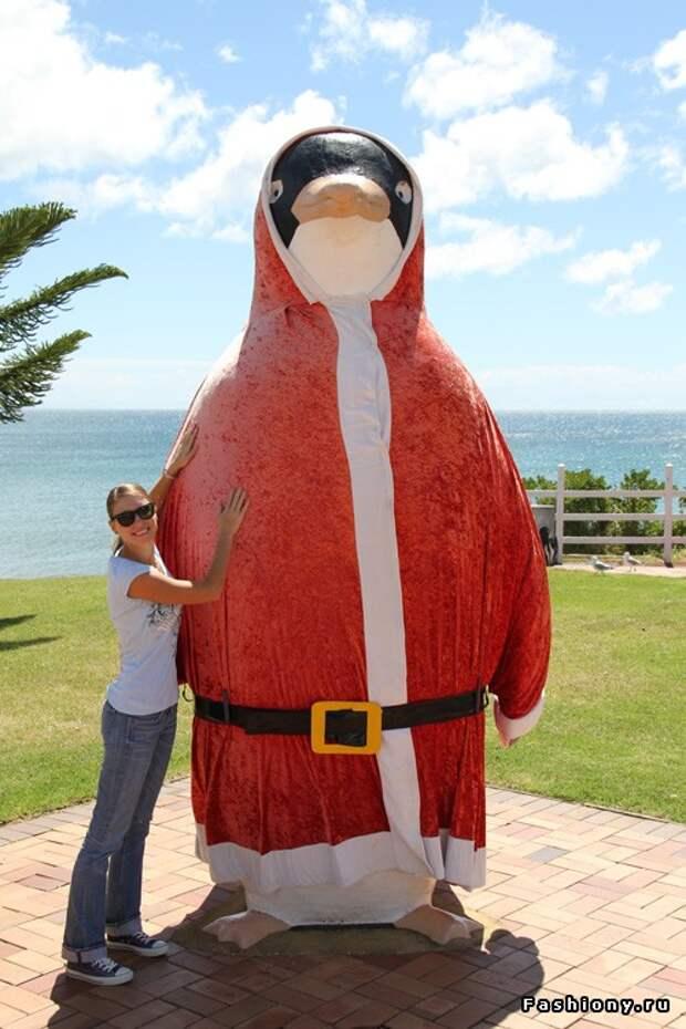 рождественский пингвин