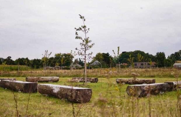 В Бельгии появилось эко-кладбище впервые в мире