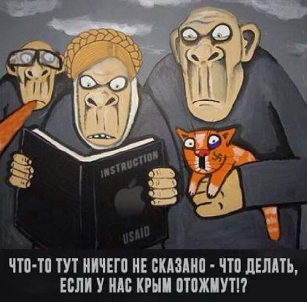 Записки украинской националистки из Крыма ( перевод с мовы)