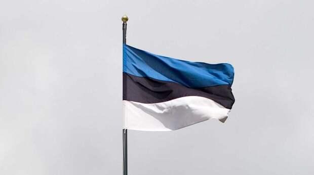 Эстонский депутат проехался по экс-президенту за идею о запрете въезда в ЕС для россиян