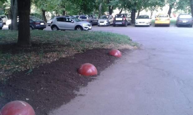 Во дворе на бульваре Яна Райниса восстановили газон