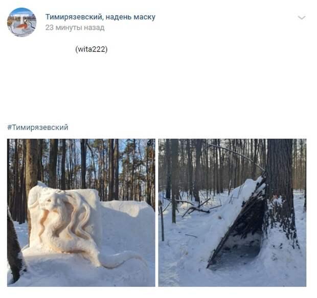 В Тимирязевском лесу обнаружили крепость дракона и шалаш из детства