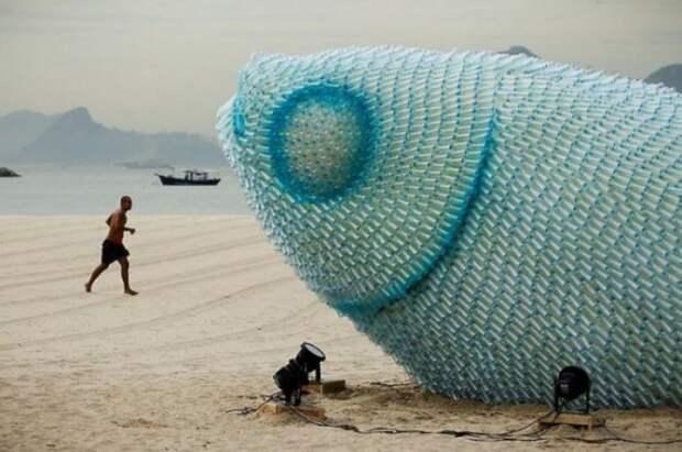 Вот какую рыбку выбросило на берег!