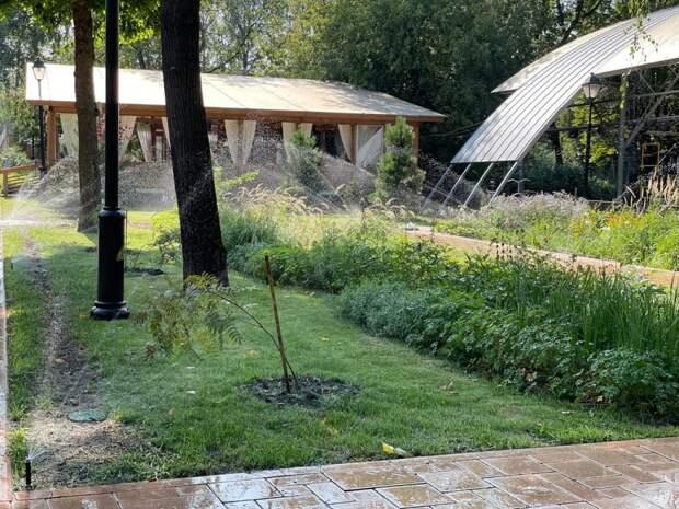 В Бабушкинском парке появилась система автополива растений