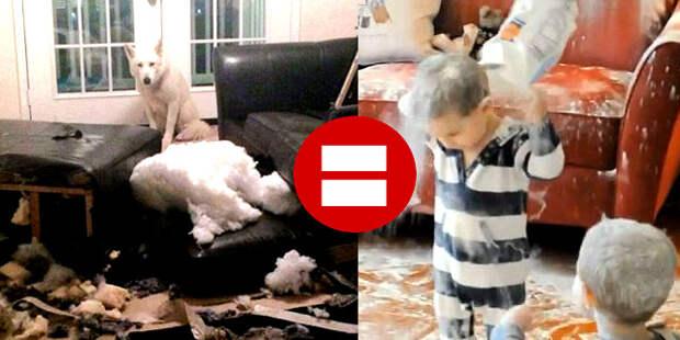Дети vs собаки. Как же они похожи!