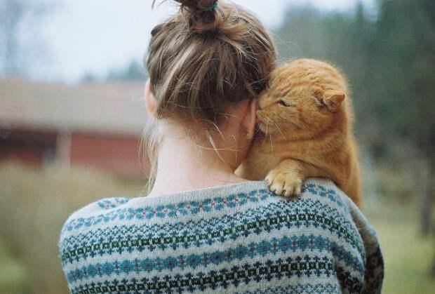 Почему женщины любят кошек