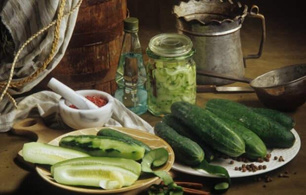 Огурцы с горчицей на зиму: запасай больше, съедаются — мгновенно! Проверенные рецепты огурцов с горчицей на зиму