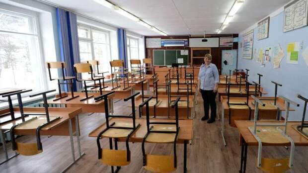 Пригодятся ли школьные науки во взрослой жизни - опрос учителей