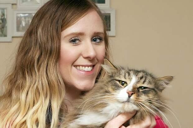 Хозяева 14 месяцев искали пропавшего кота, и нашли на фабрике зоокорма - толстым и счастливым животные, забавно, истории, история, коты, кошки, пропавшие