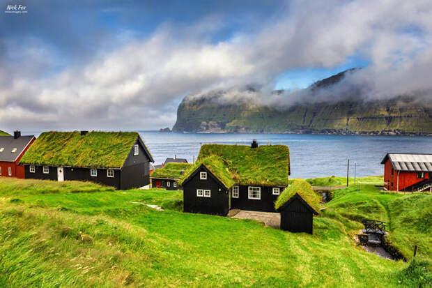 Зелёная крыша