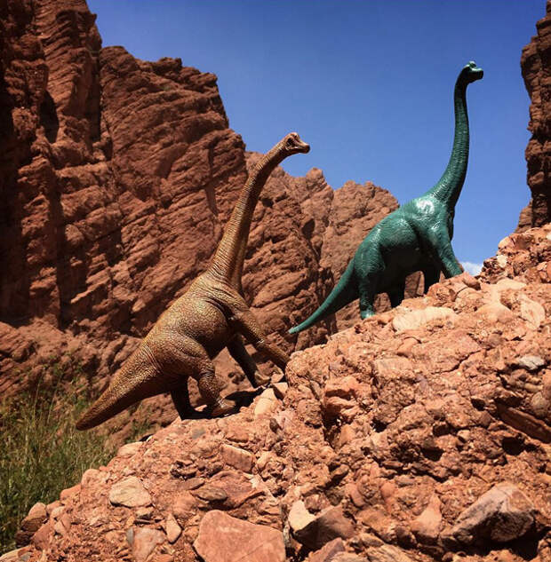 travel-photography-dinosaur-toys-dinodinaseries-jorge-sa_013