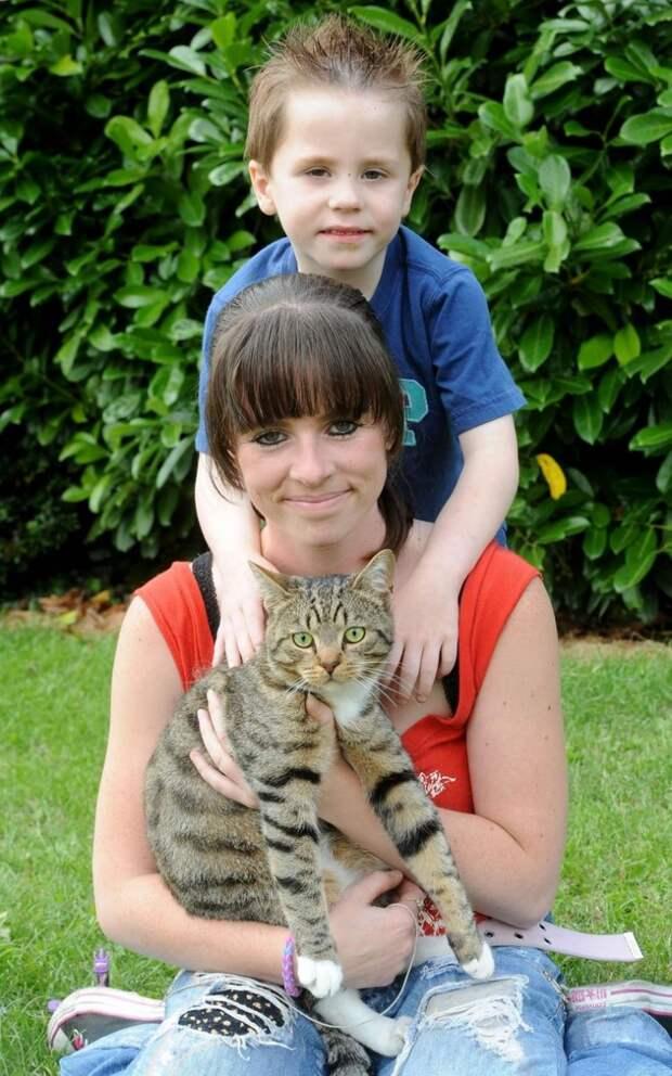 Отважный кот спас мальчика от хулиганов  жизнь, кот, спаситель