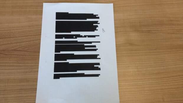 """Голландцы опубликовали 569 пустых бумажек по """"Боингу"""""""