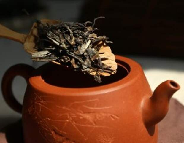 Чай китайского императора, жившего 2150 лет назад