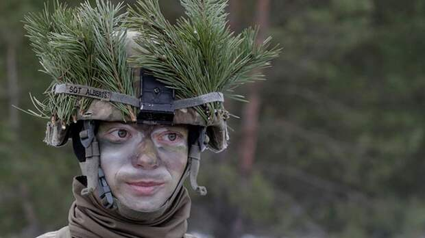 Кто пугает Европу «ахиллесовой пятой» в войне с Россией
