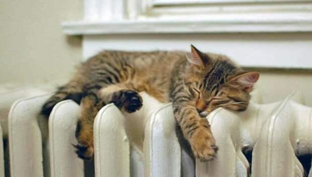 Почти в 20 домах Климовска отключат или убавят тепло в четверг