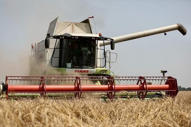 На Кубани собрали рекордный урожай зерна в 12,4 млн тонн