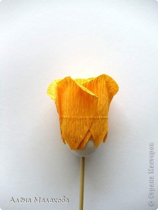 Мастер-класс Роза из гофрированной бумаги Бумага гофрированная Клей фото 22