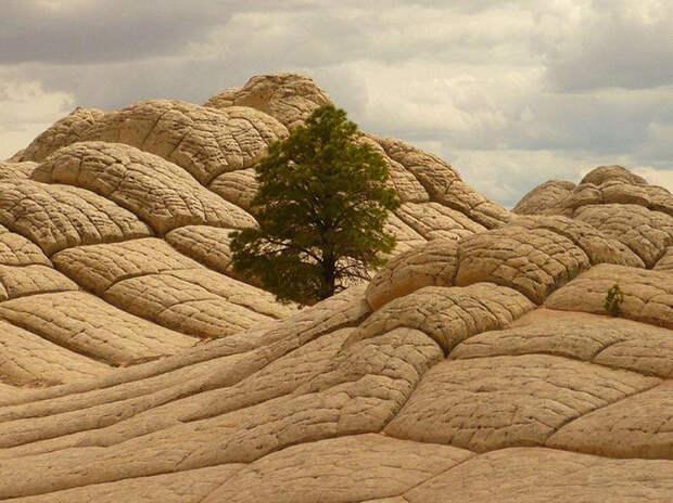 Белый карман и скалы Вермиллион