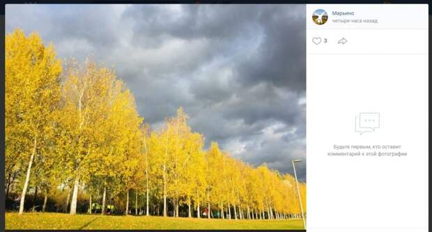 Фото дня: прогулка в «золоте» марьинского парка