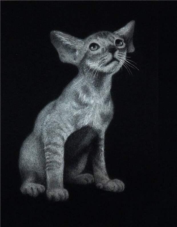Картины из тополиного пуха Инны Данченко