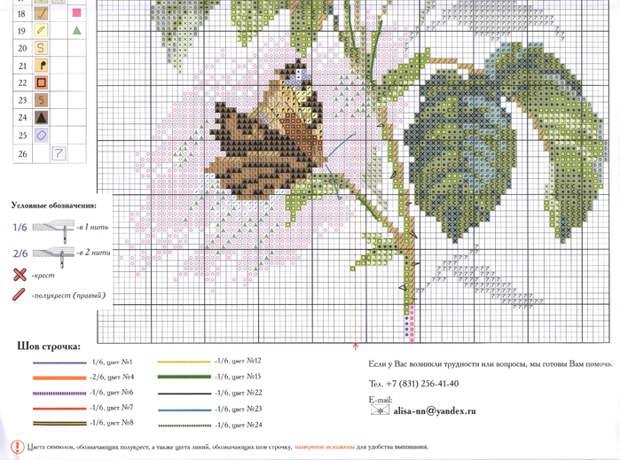 розы и бабочка3 (700x519, 415Kb)