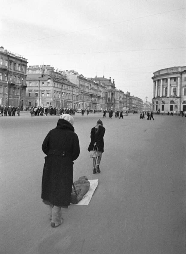 Голоса блокады: жизнь в Ленинграде глазами осажденных жителей