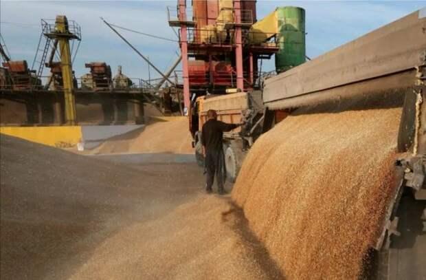 Россия повышает пошлину наэкспорт пшеницы