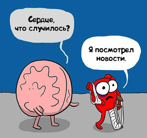 Как дружат сердце и мозг. Комиксы, понятные каждому