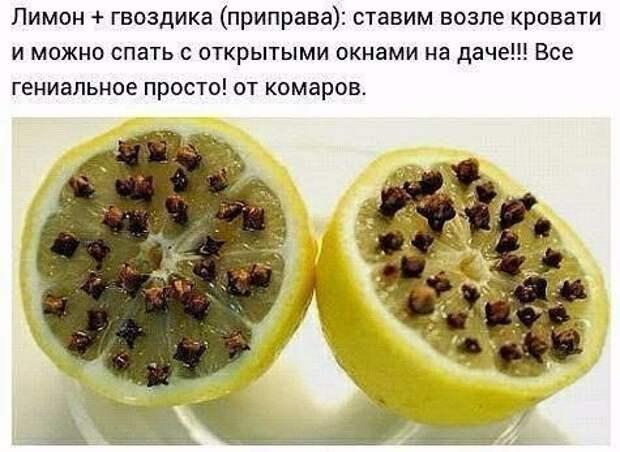 Натуральные средства от комаров