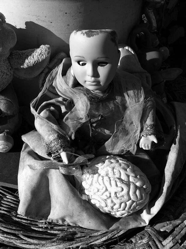 Кукла с мозгом.