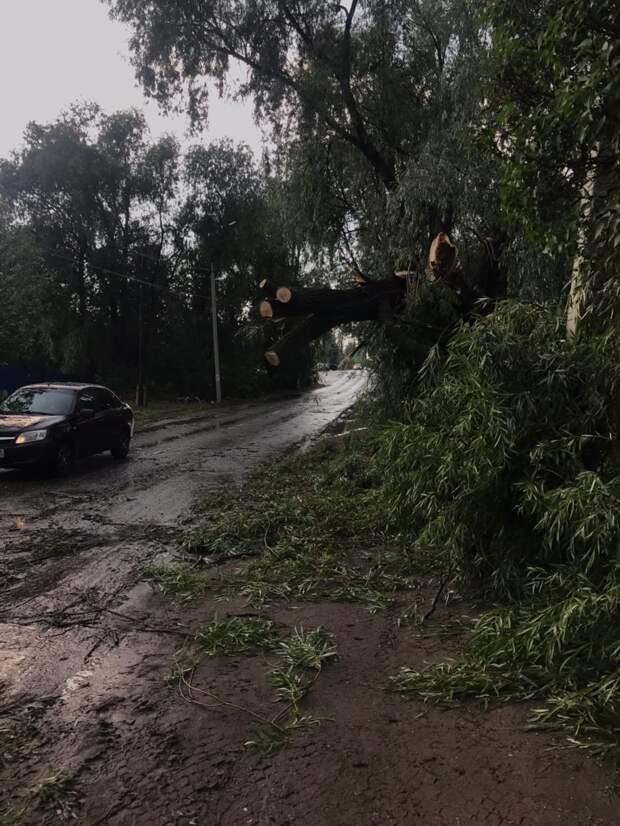 Сильный ветер принес неприятности в районах Удмуртии