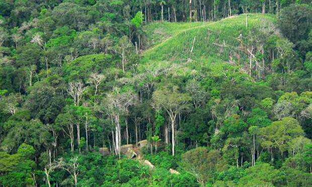 В лесах Амазонки нашли древние поселения в форме циферблата часов