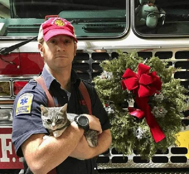 Пожарный спас котенка, а мурлыка, в свою очередь, помог ему